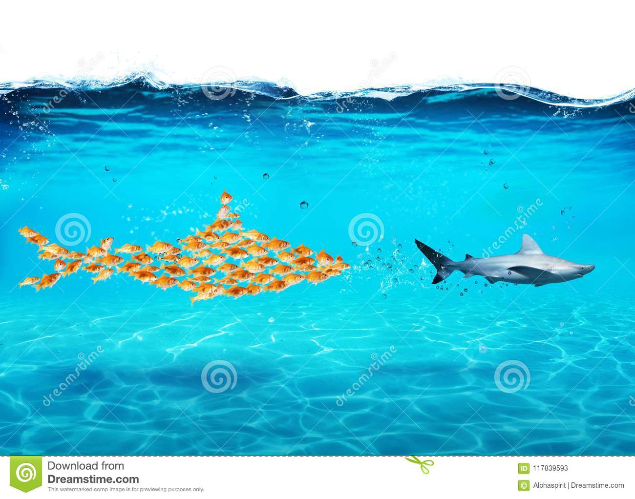 Big shark made of goldfishes attack a real shark. Concept of unity is strength, teamwork and partnership