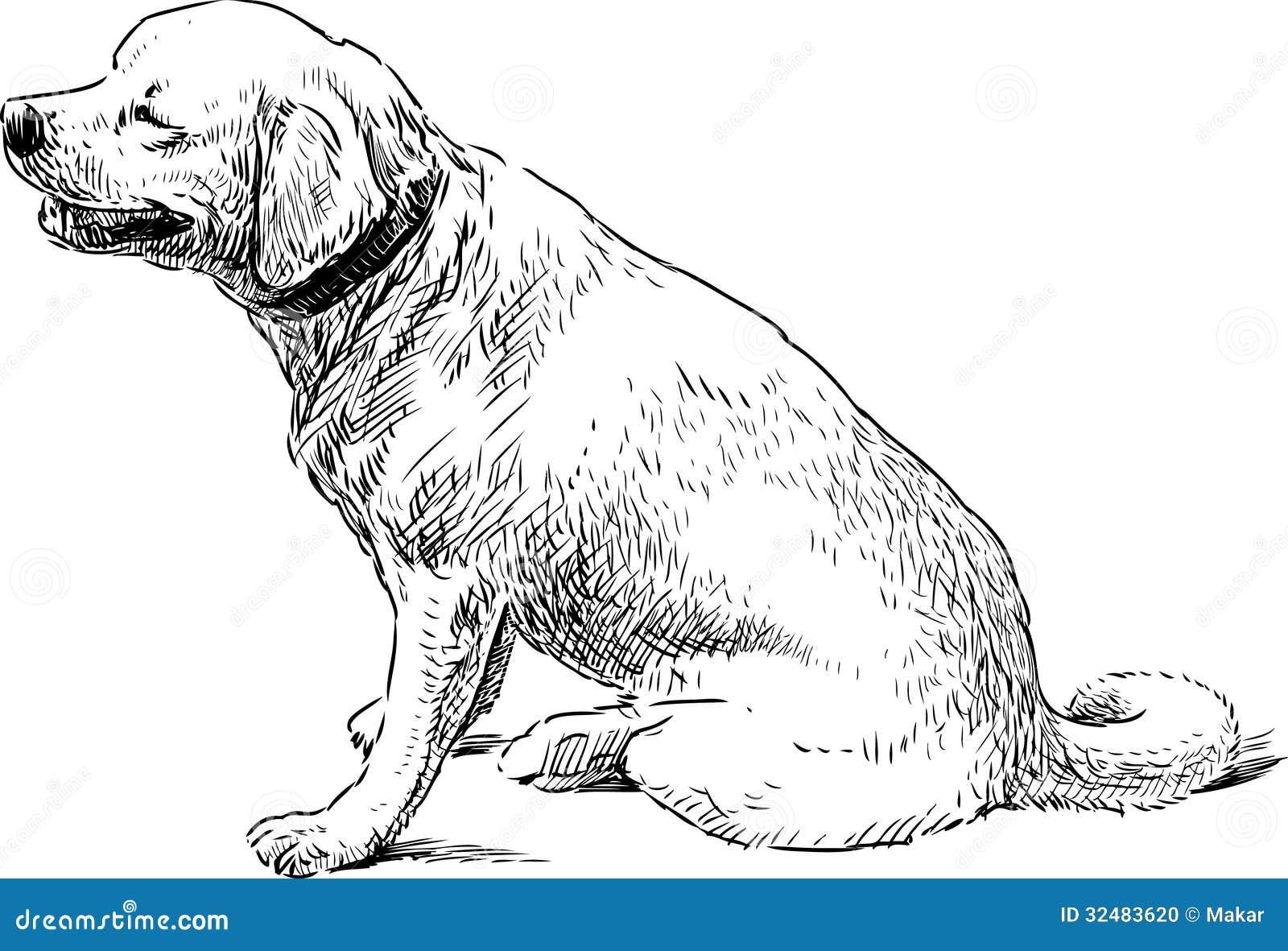 Big Sitting Dog Stock Vector Illustration Of Domestic 32483620