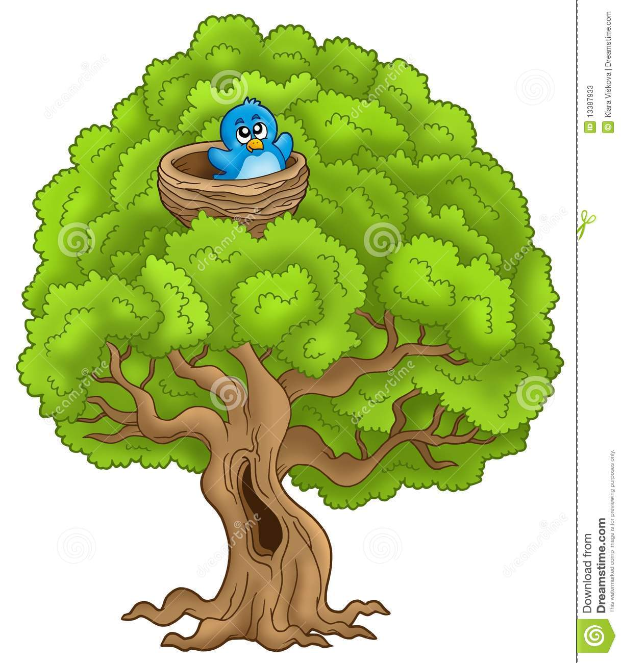 Big Tree With Blue Bird In Nest Stock Photos - Image: 13387933