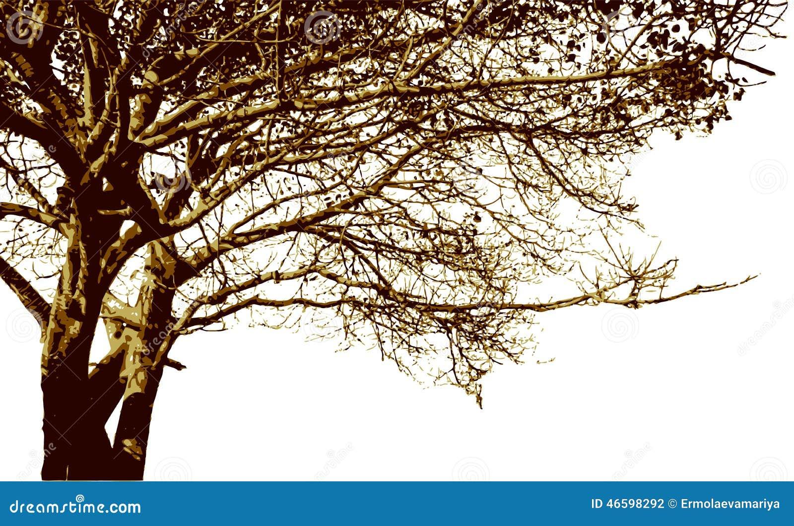 big tree and branches silhouette detailed vector stock On nombre de arbol grande de ramas frondosas