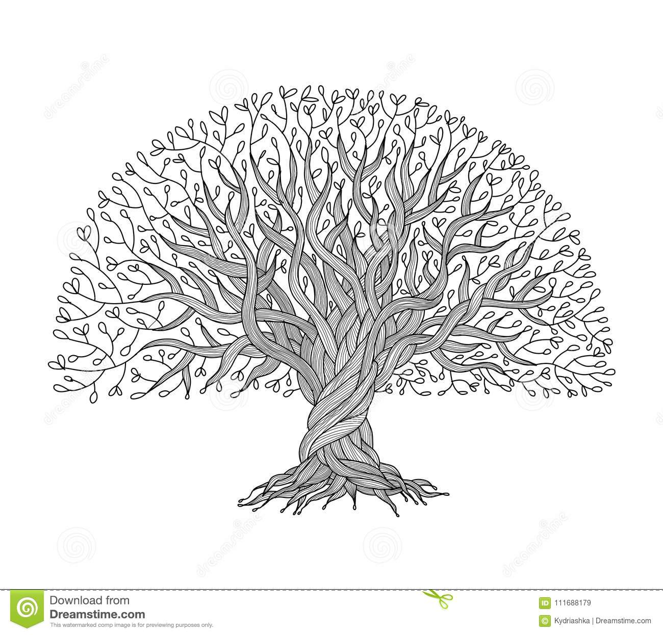 Big Tree With Roots For Your Design Stock Vector Illustration Of Ornament Olive 111688179