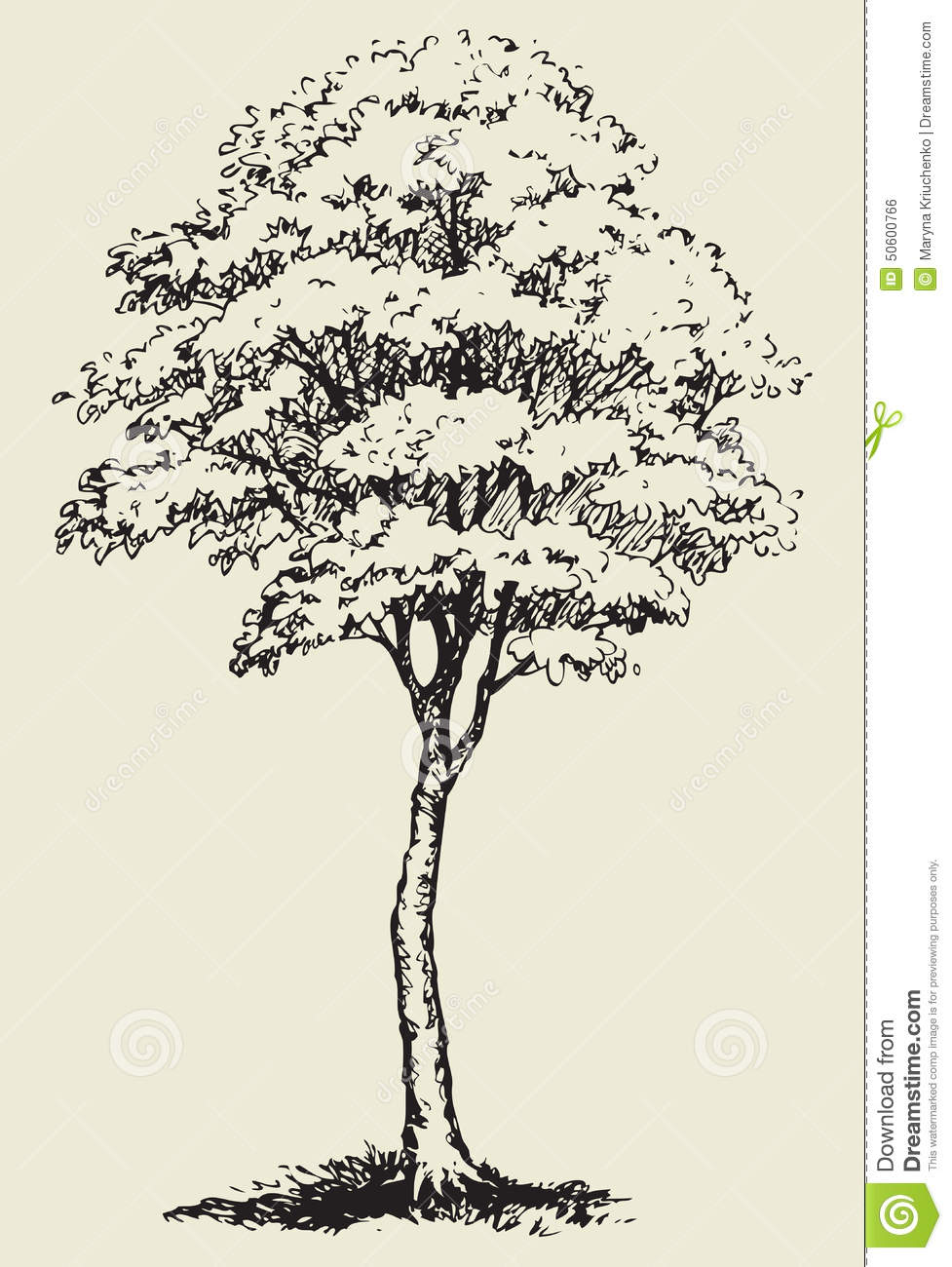 Cute big green deciduous tree with lush foliage. Vector monochrome ...