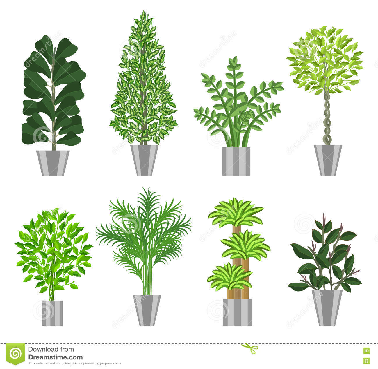 Big trees house plants collection vector illustration for Different types of plants and trees