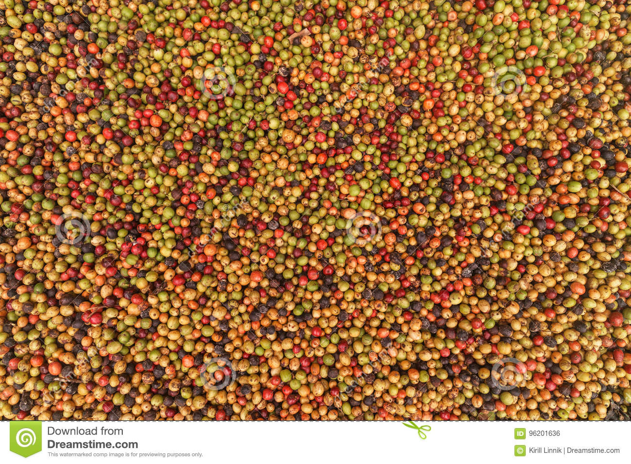 Download Big Variaty Of Coffee Beans Stock Photo - Image of organic, berries: 96201636