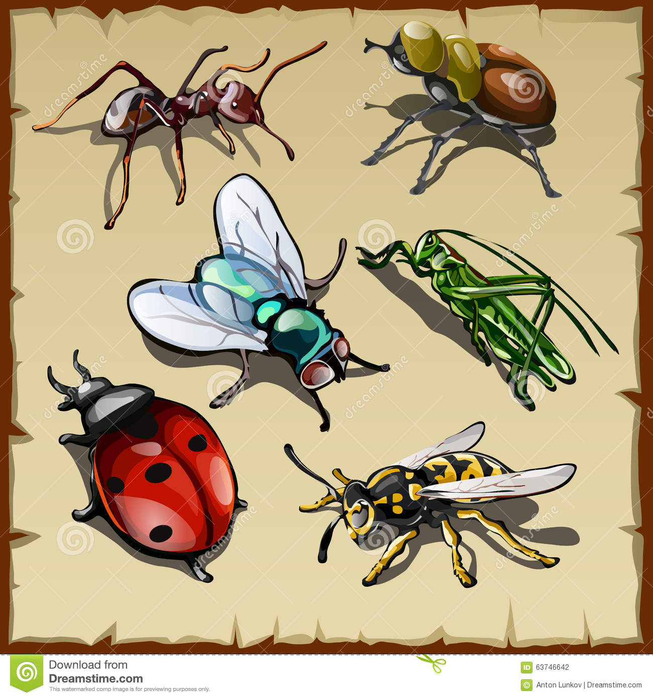 Big vector set of different insects, six varieties