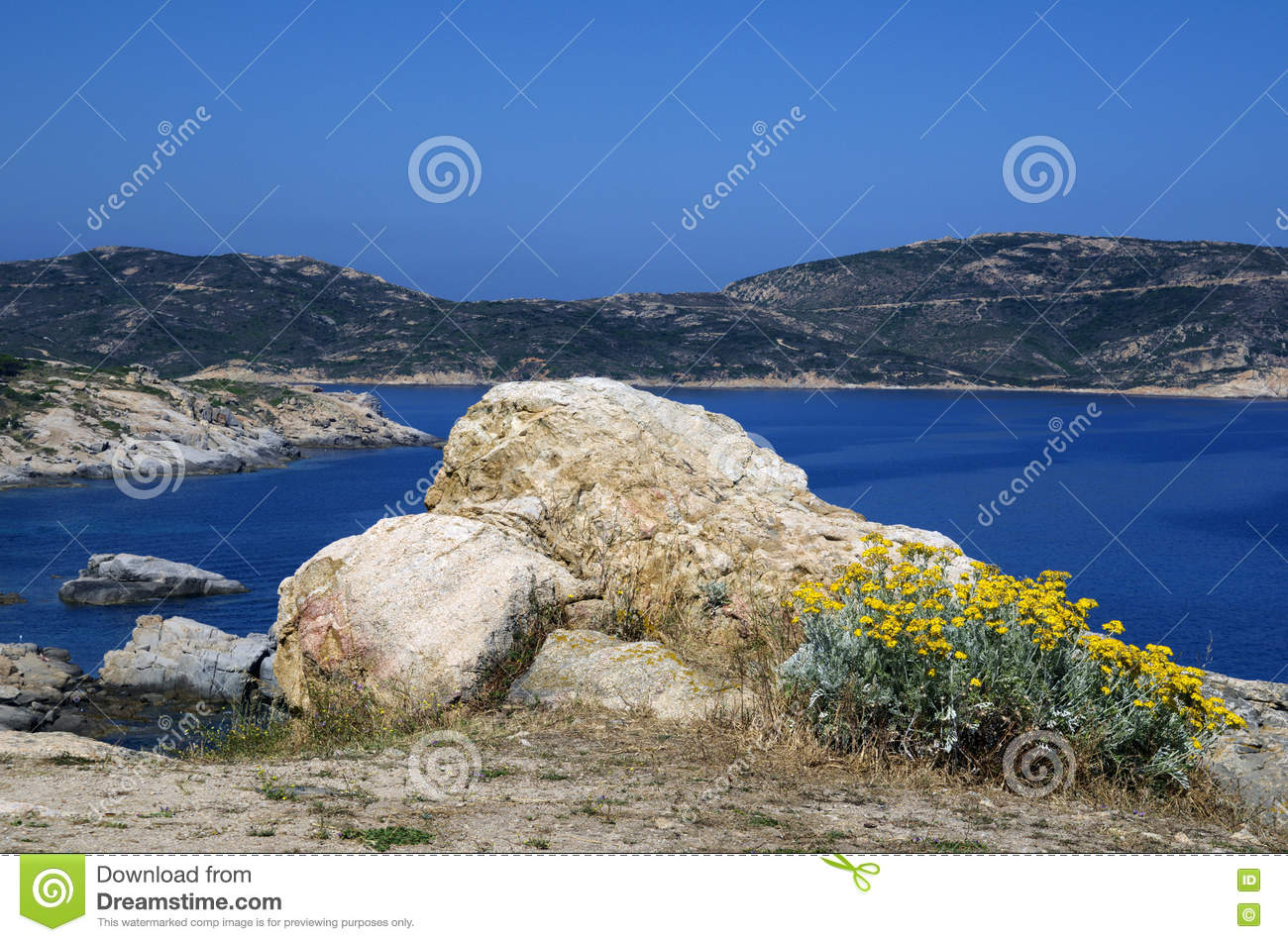 Big White Rock And Yellow Flowers Face To Mediterranean Sea And