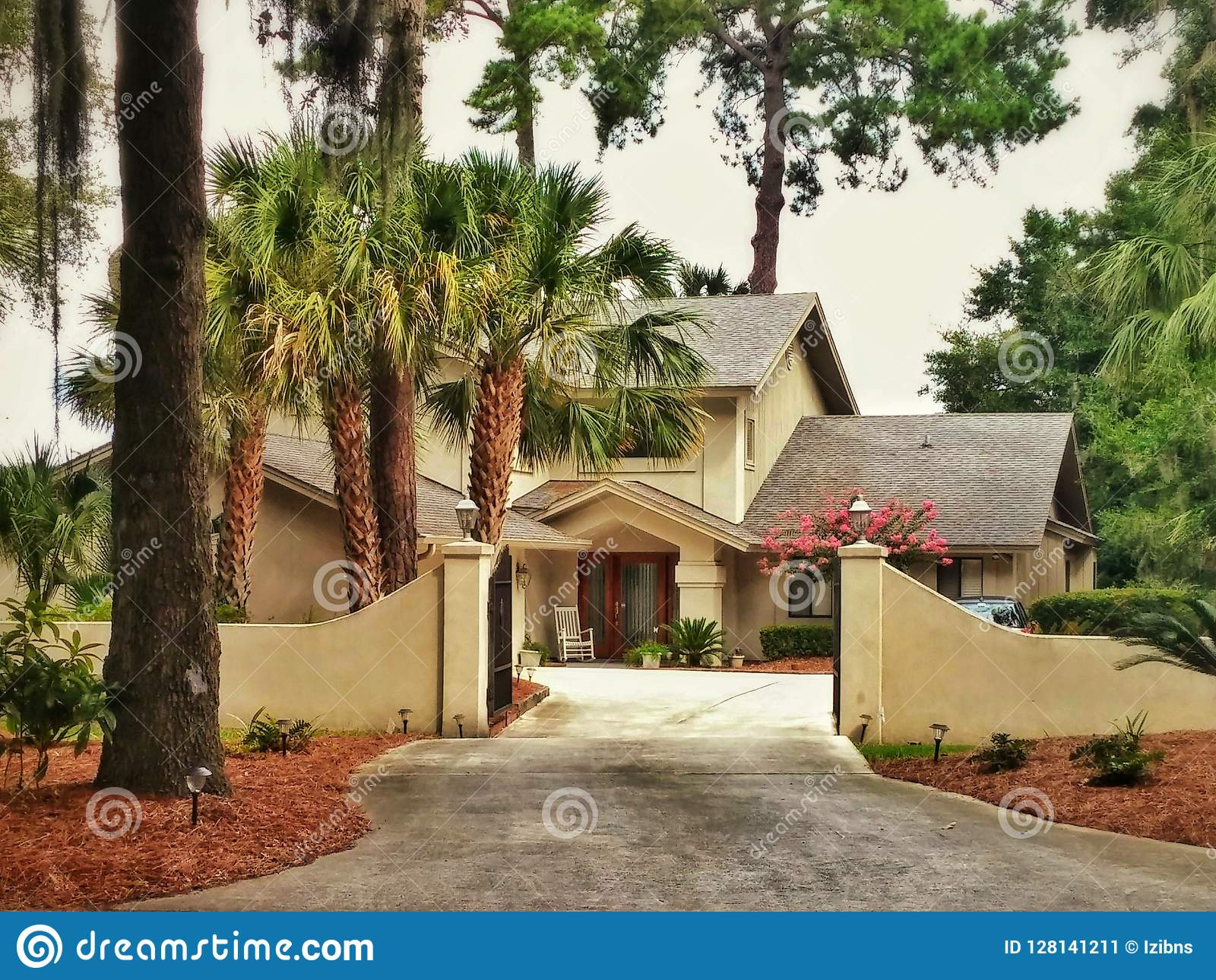 Big yellow american house with palm trees in the woods stock image