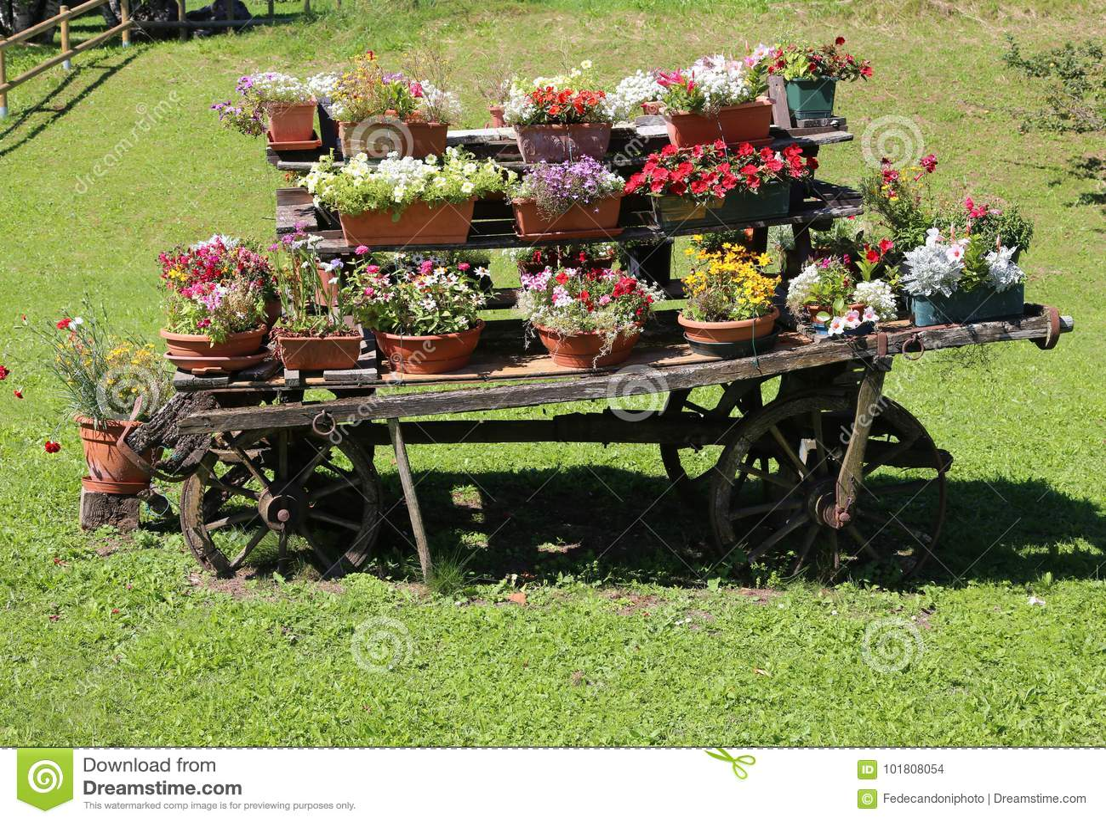 Decorazione Vasi Da Giardino : Biga di legno con i vasi da fiori per decorare il giardino