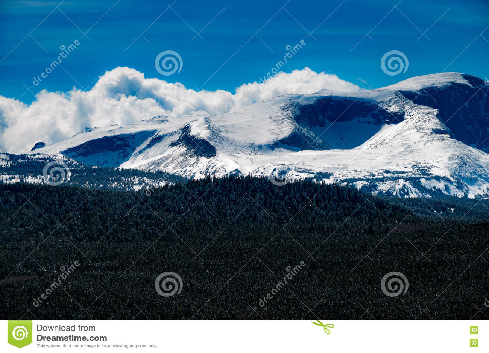 Bighorn pasmo górskie Wyoming