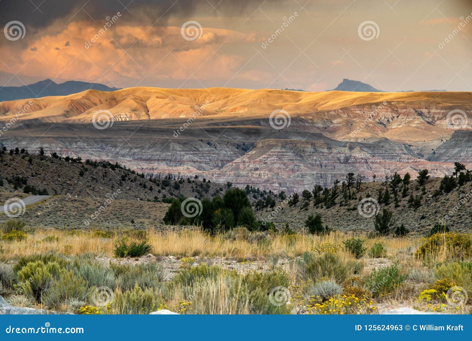 Bighorn Sheep Range