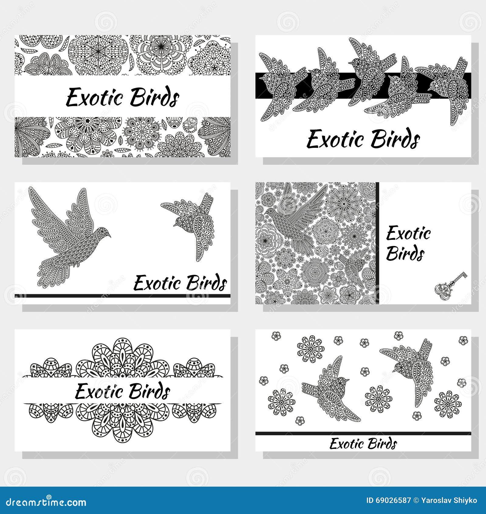 Biglietti da visita con gli uccelli ed i fiori decorativi creativi Colori in bianco e nero