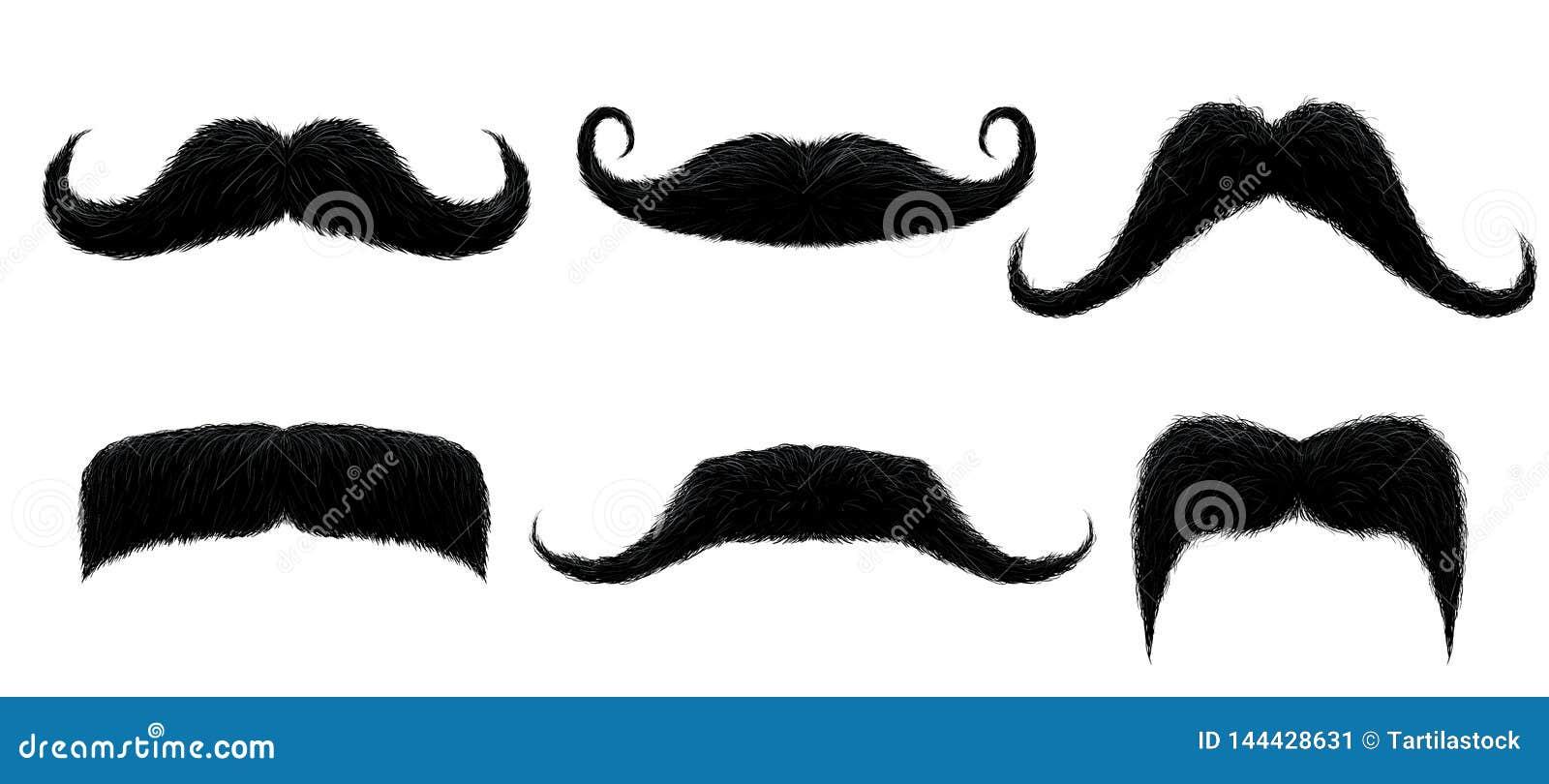 Bigote del vintage Bigote retro divertido, bigotes falsos y ejemplo aislado del vector de los bigotes del pelo rizado