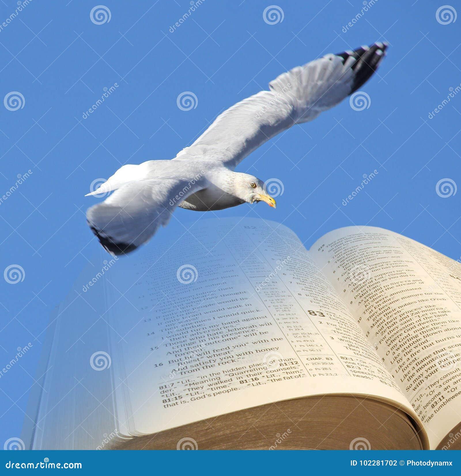 Bijbelvogel van vrijheid