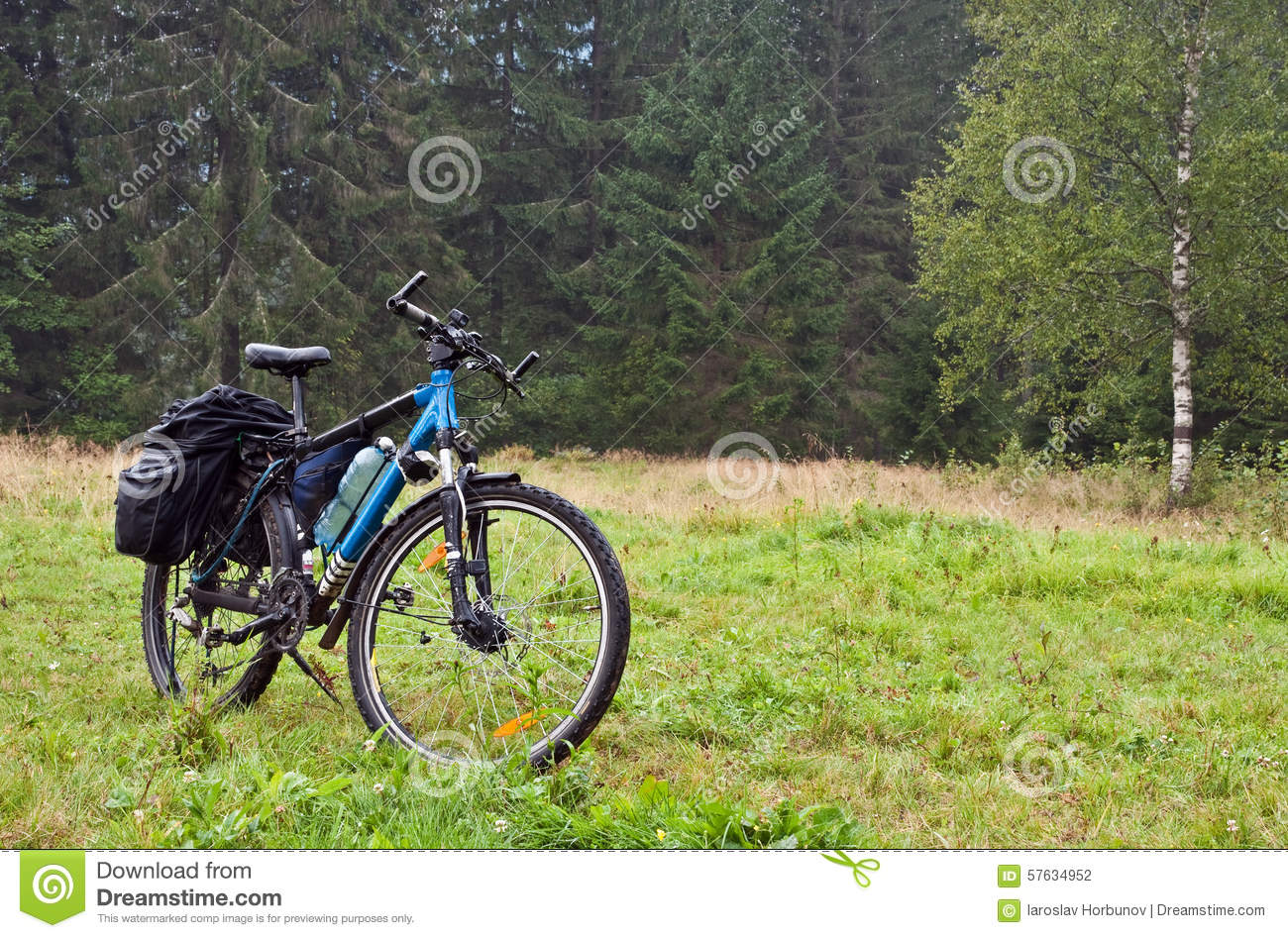 Bike on background of the forest stock photo image of nature download bike on background of the forest stock photo image of nature mountain voltagebd Image collections