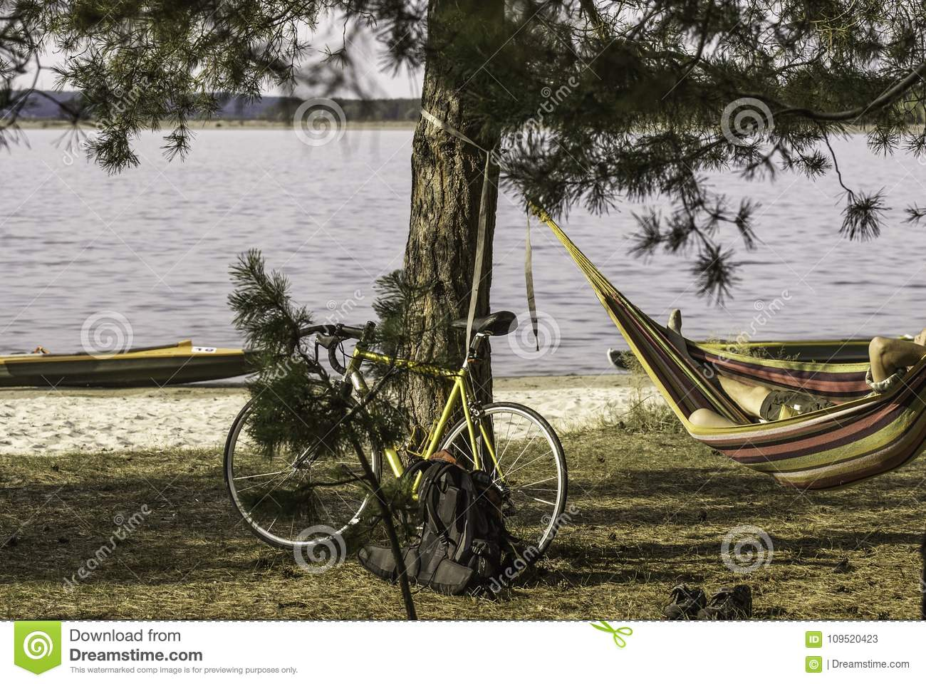 A bike near the pine on the river bank, a cyclist resting in a hammock.