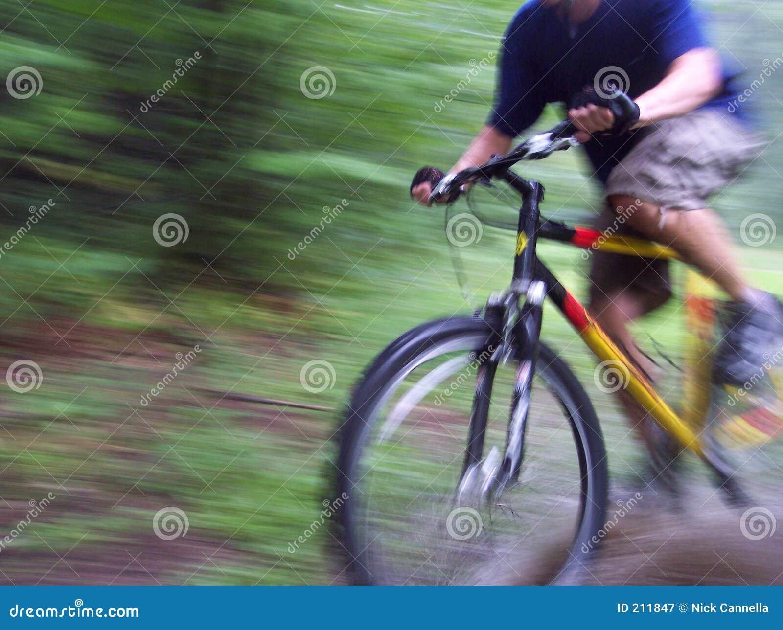 Biking attraverso la foresta