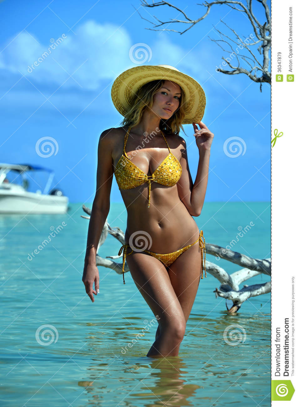 Bikini Model In Straw Hat Posing In Front Of Camera At Tropical Beach Location Stock Image ...