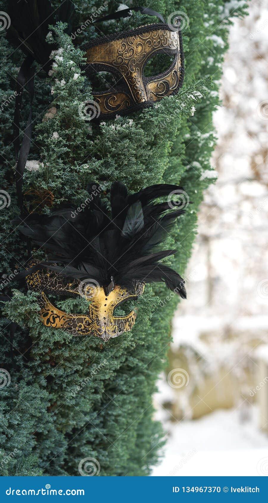 Bild av eleganta svarta och för guld venetian, mardigrasmaskeringar på granträd och vit snöbakgrund för fotostruktur för abstrakt