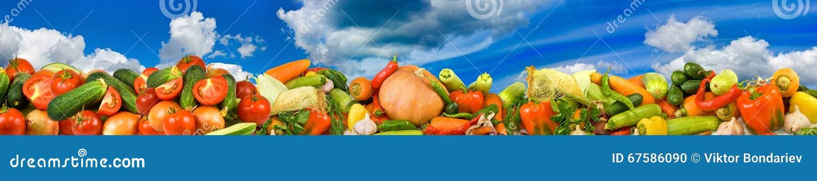 Bild av många rå grönsaker en himmelbakgrund