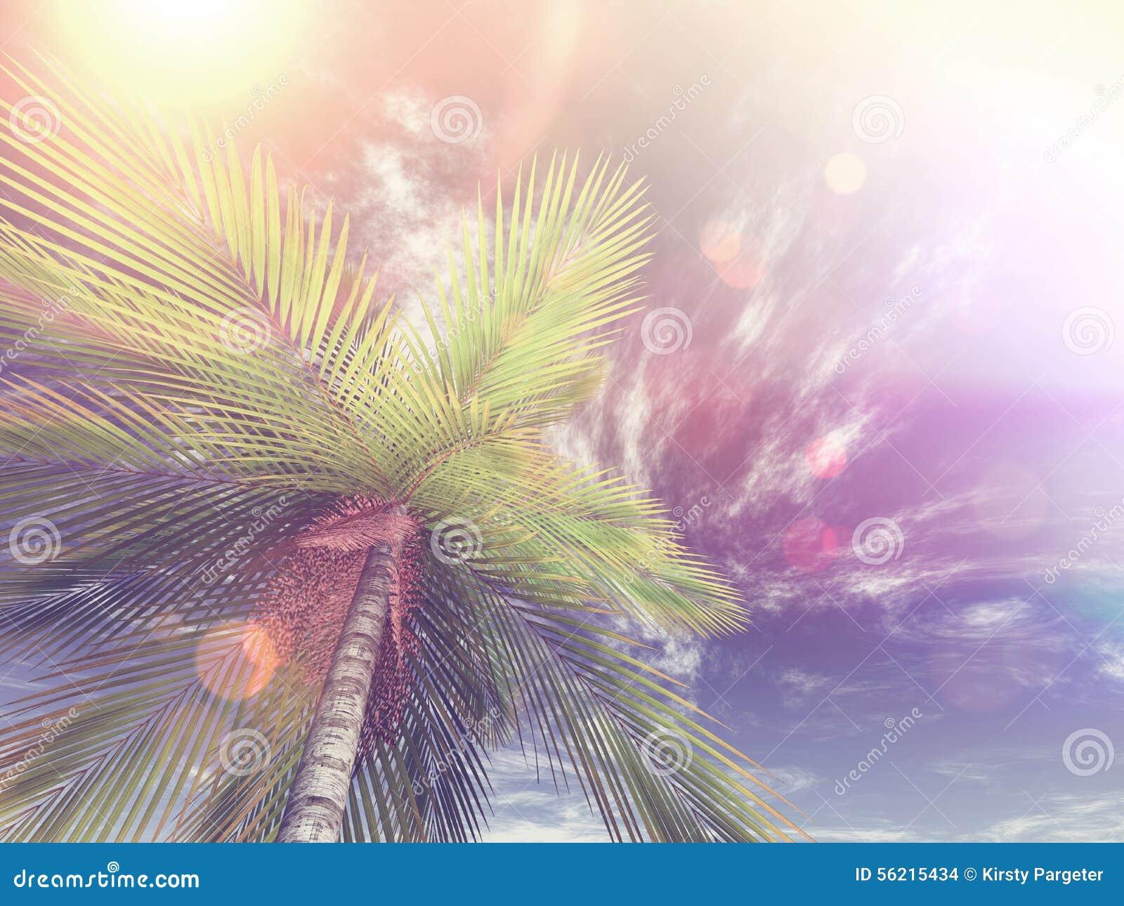 Bild 3D von eine Palme in Richtung zum Himmel oben schauen