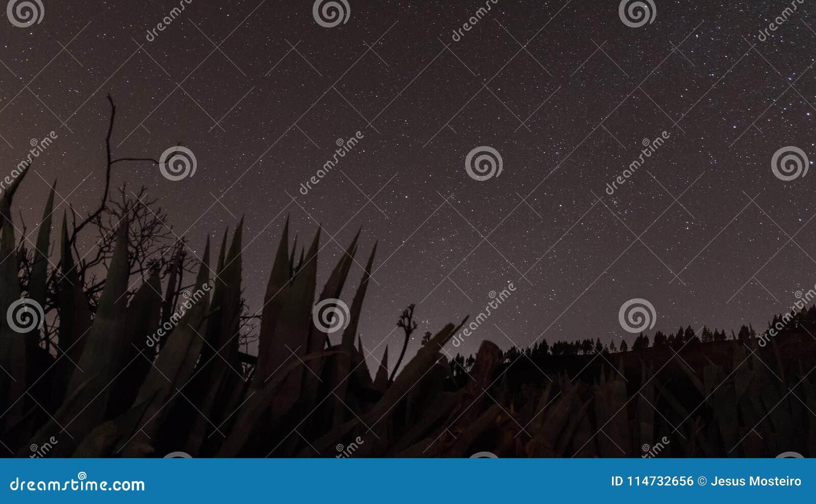 Bild des Himmels und der Sterne, Foto in der Insel von Gran Canaria