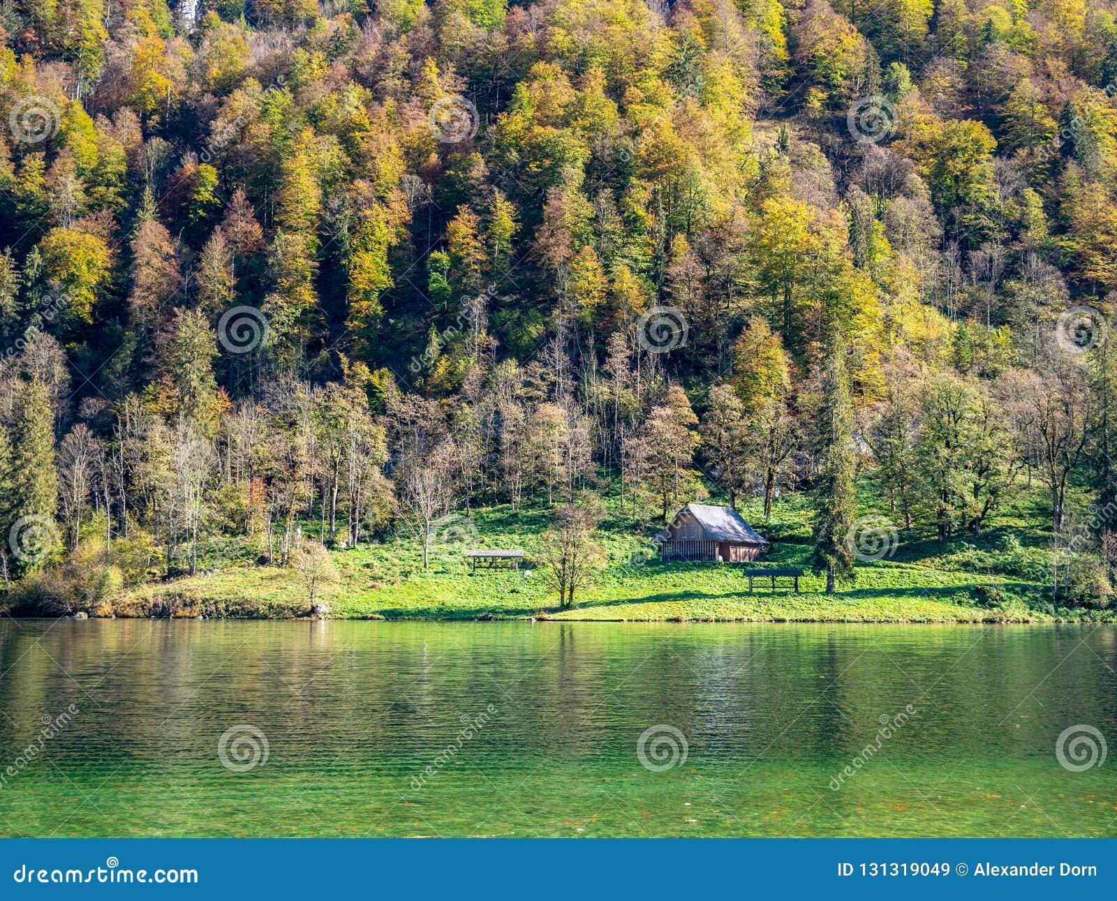 Bild wenigen Hauses nahe bei einem See und forrest
