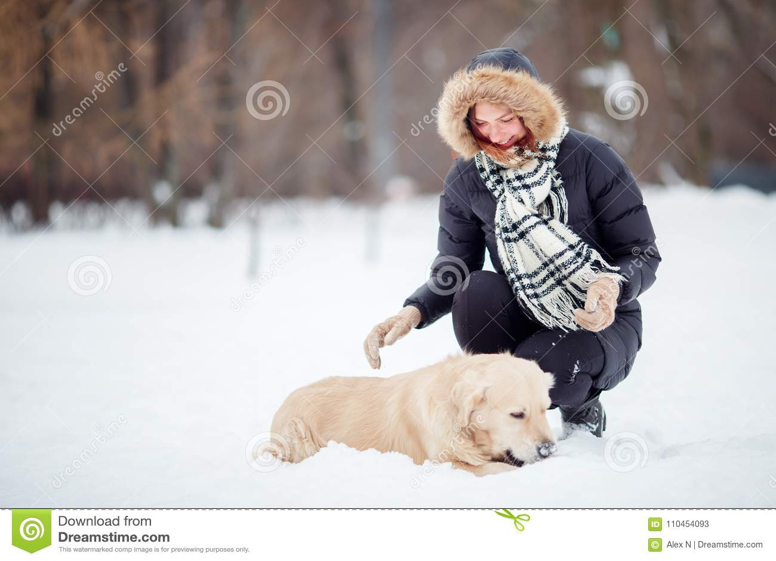 Bilden av kvinnan som squatting bredvid labrador i vinter, parkerar