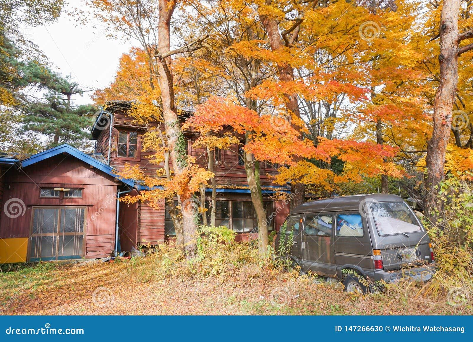 Bilen framme av det öde huset i färgen för djungelskogändringar