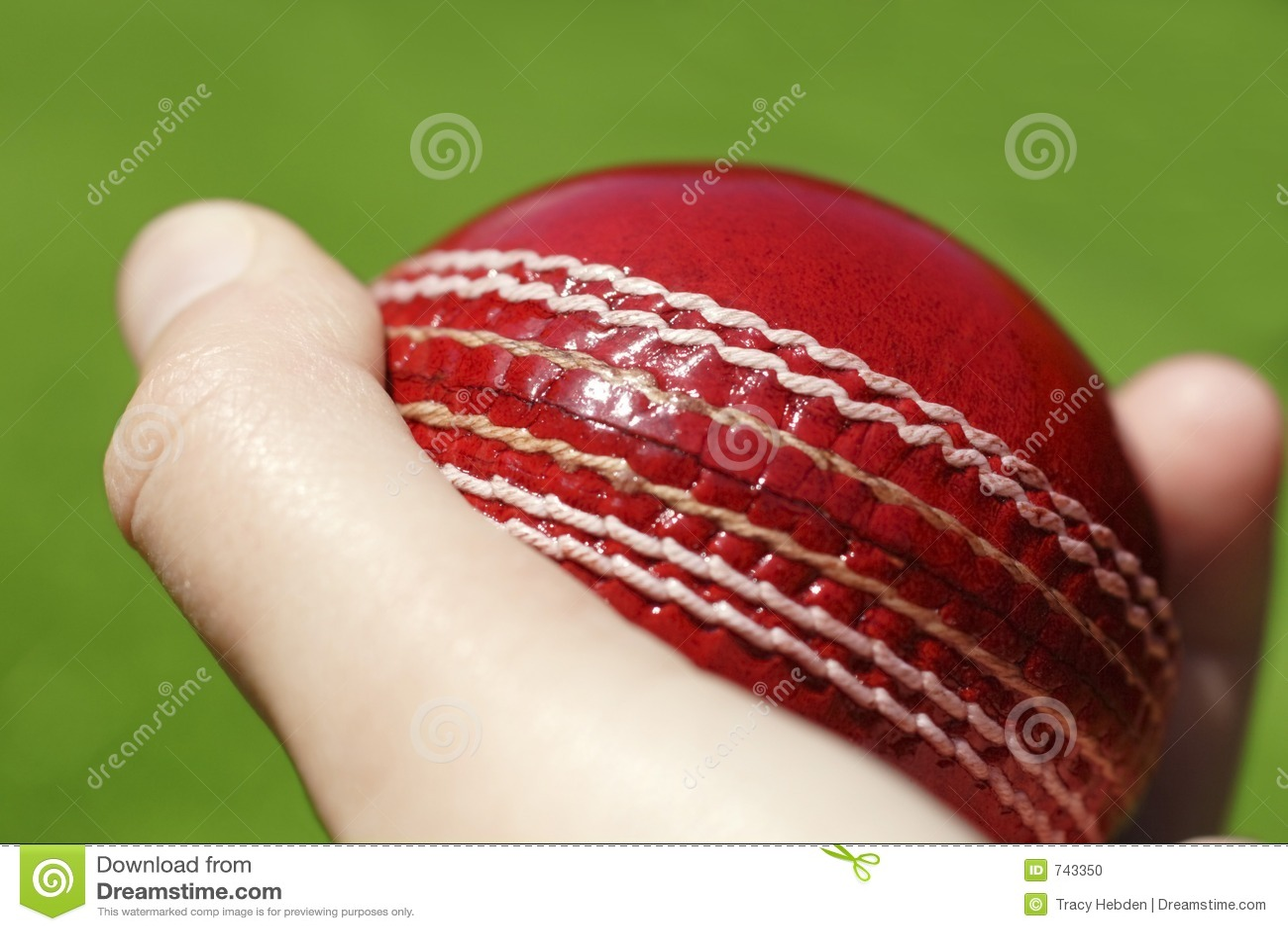 Bille de cricket
