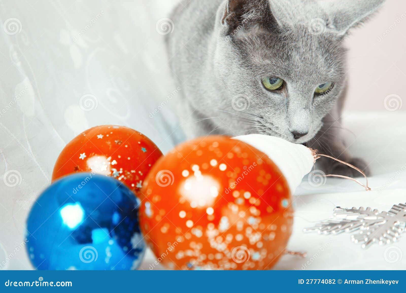 Billes de chat et de Noël