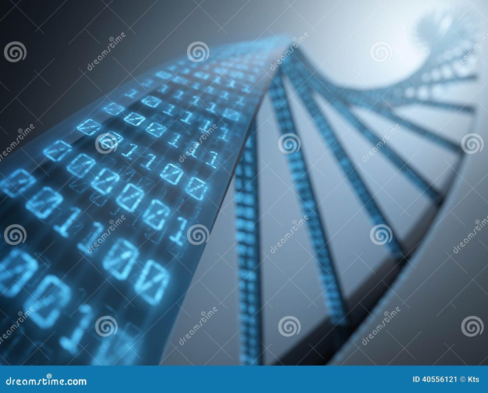 Binärt DNA