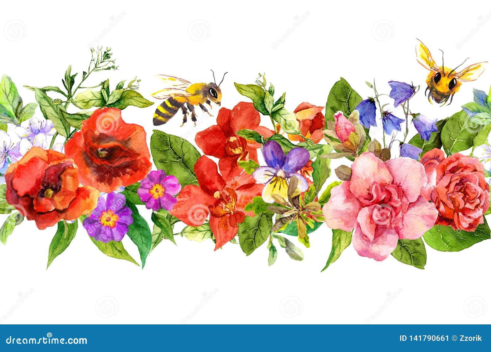 Bin äng blommar, sommargräs, lösa sidor Upprepa den blom- horisontalgränsen vattenfärg