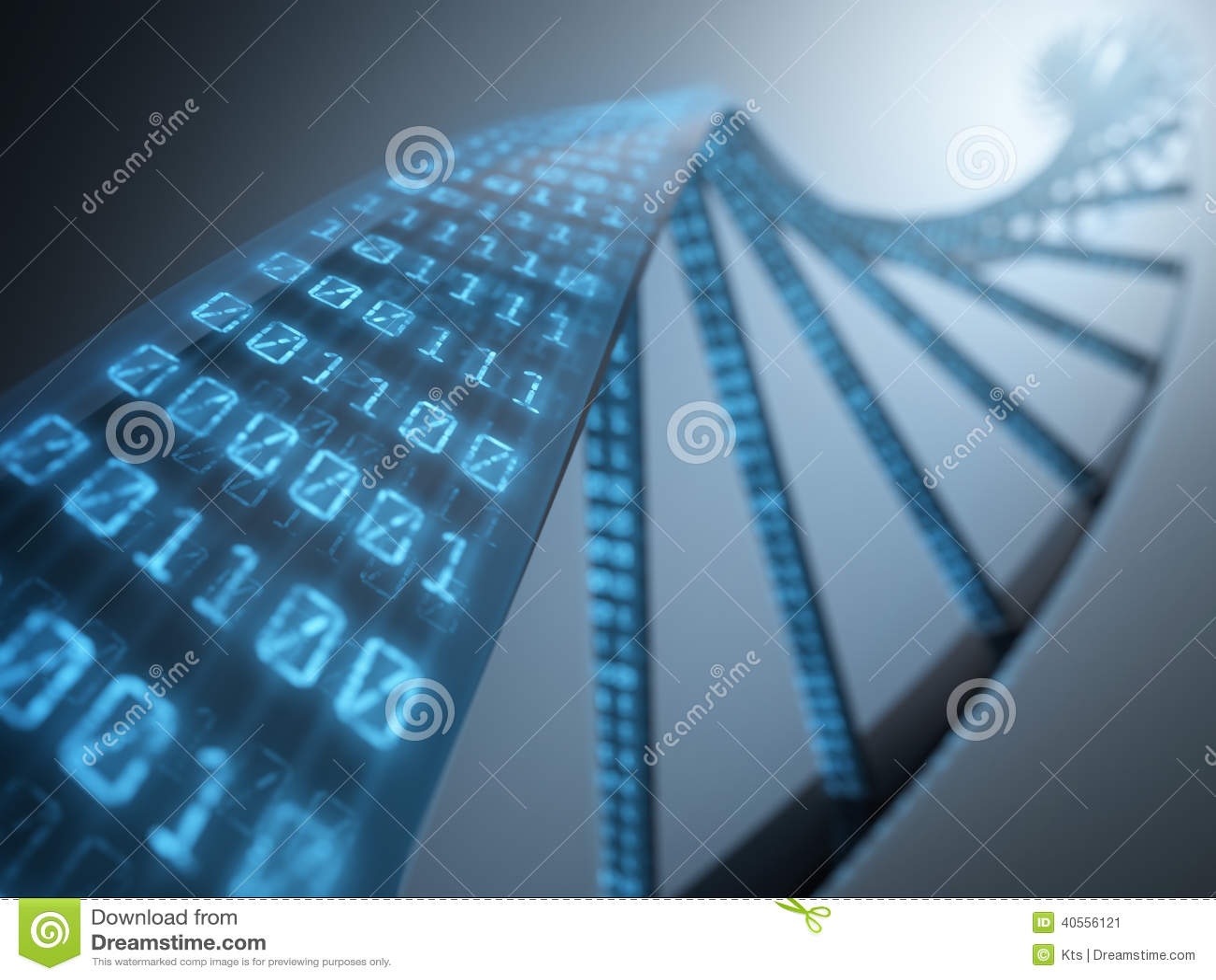 Binaire d ADN