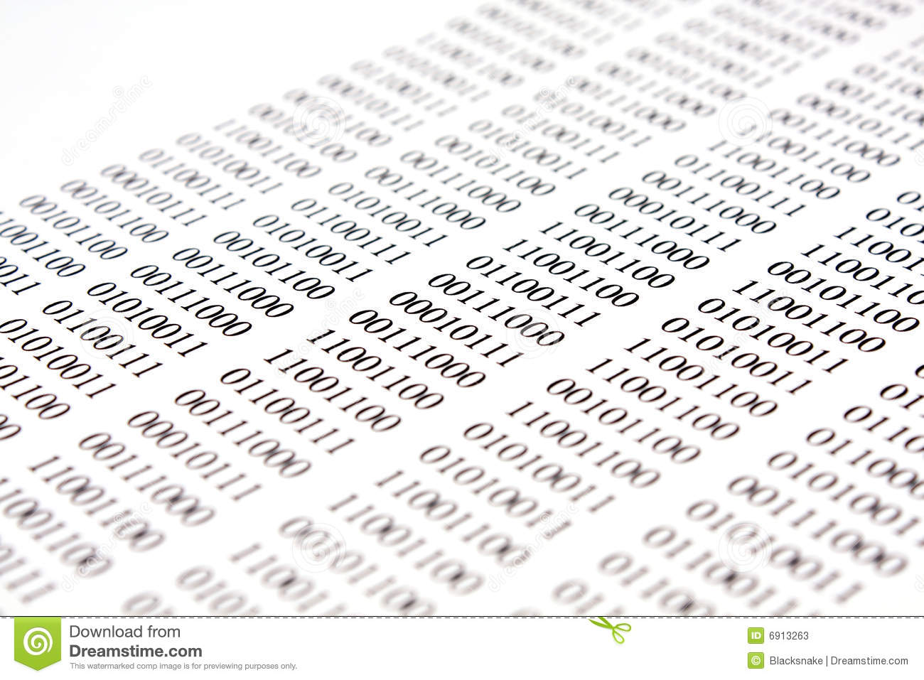 Binary Code Essay Sample