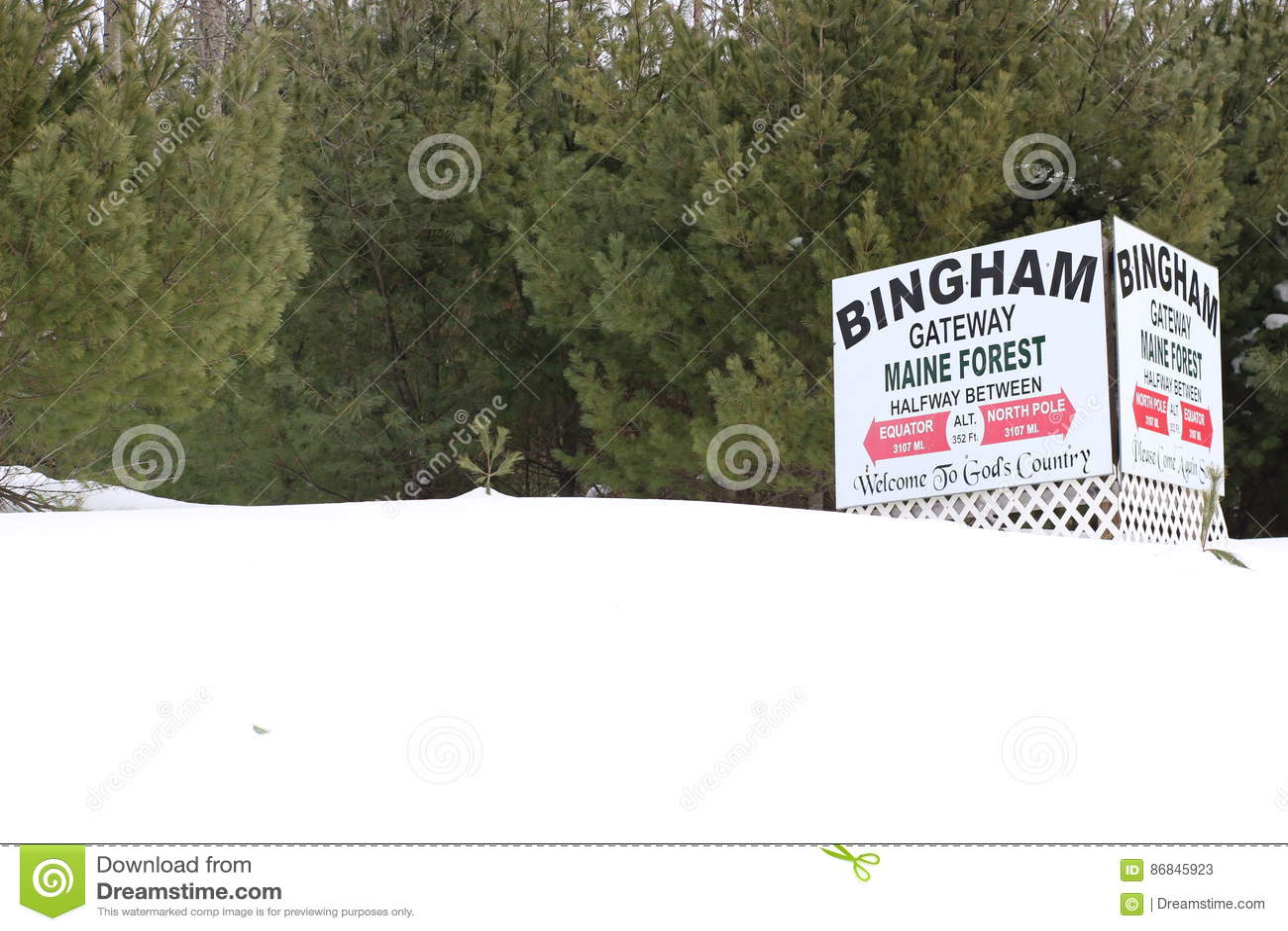 Bingham Maine