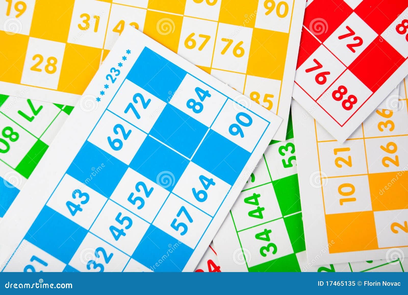 Bingo чешет цветы различные