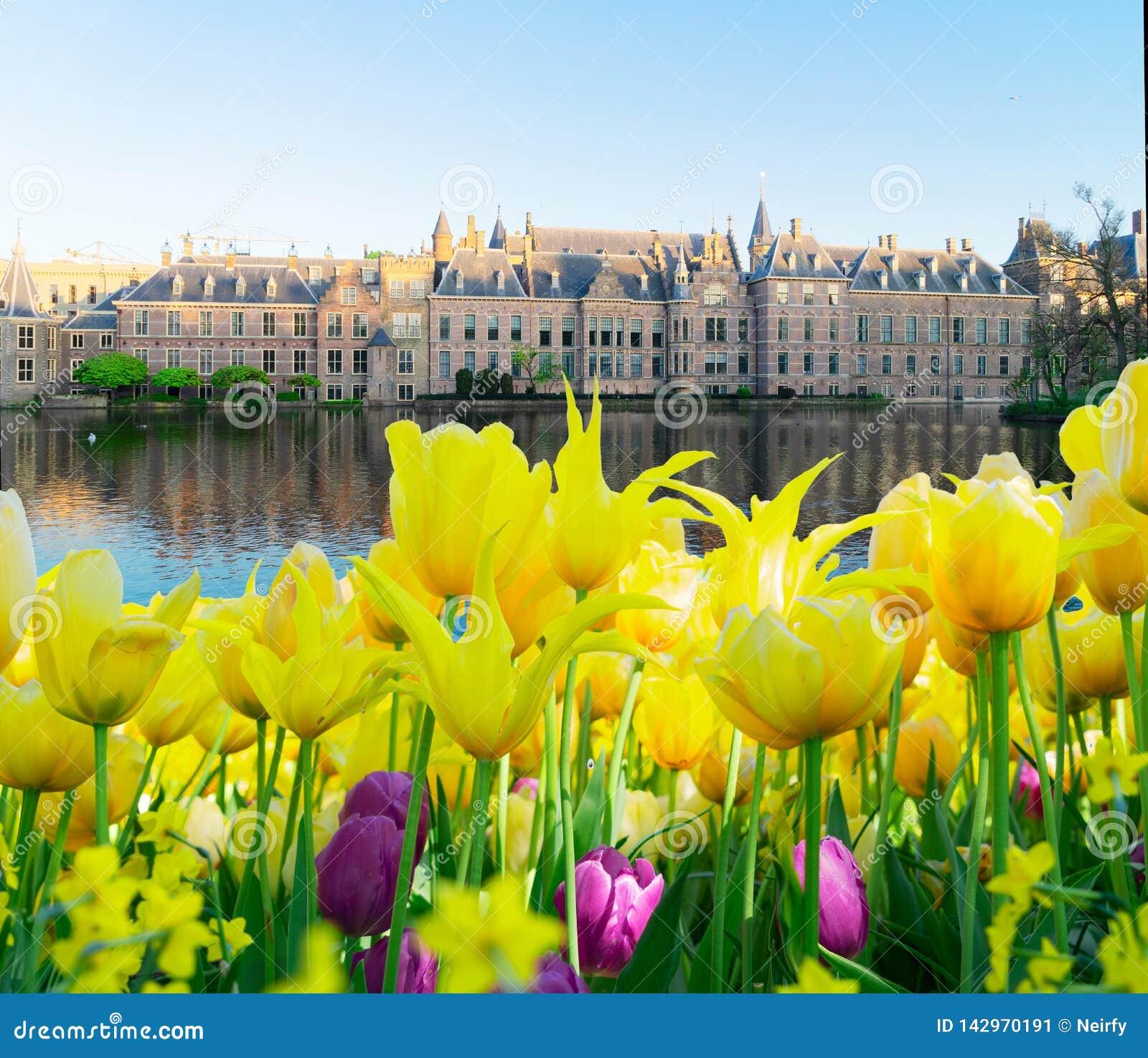Binnenhof - holländsk parlament, Holland
