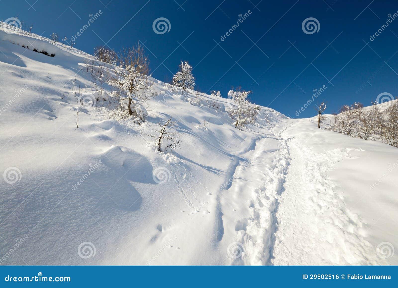 Binnenland het ski?en