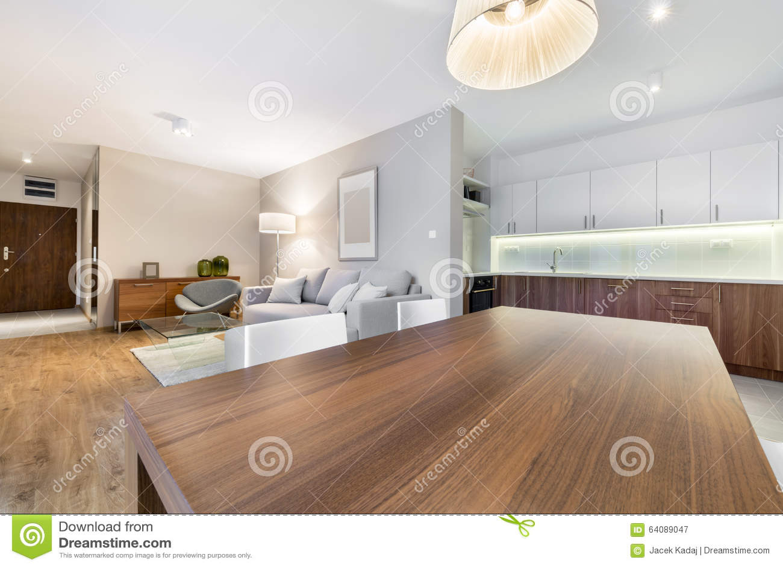Binnenlands Ontwerp: Woonkamer En Keuken Stock Afbeelding ...