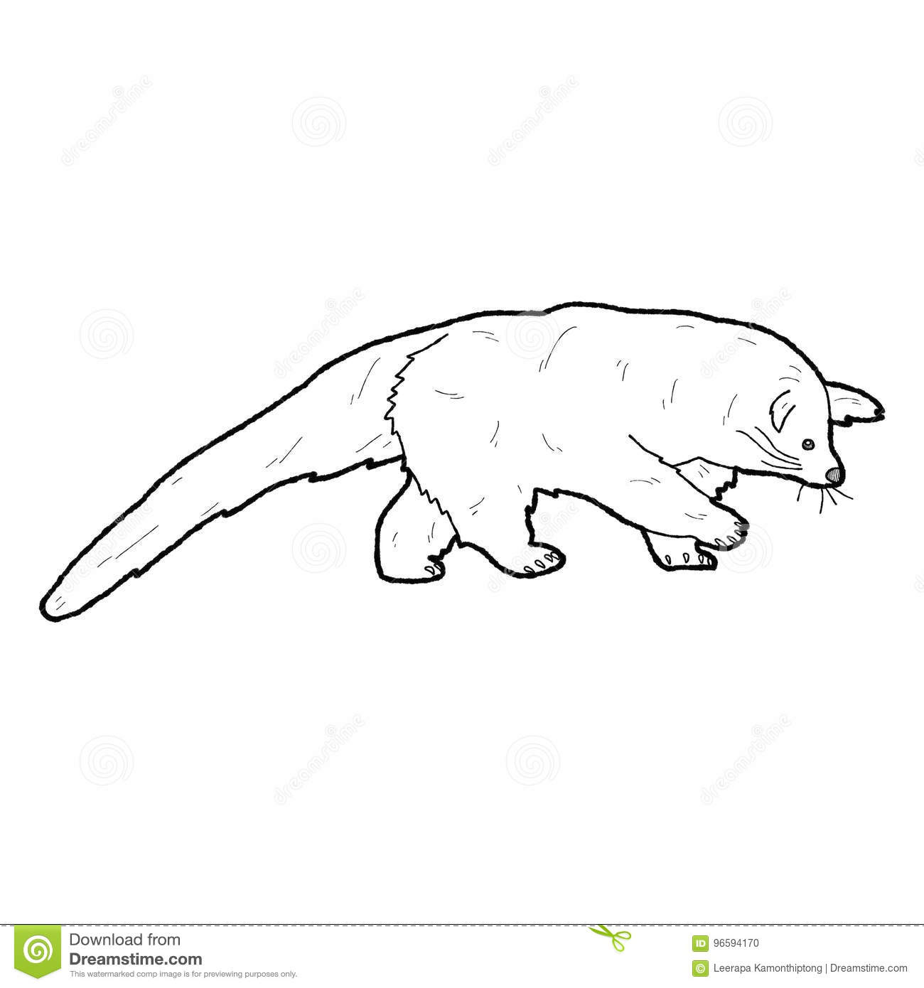 Binturong Stock Illustrations U2013 25 Binturong Stock Illustrations, Vectors U0026  Clipart   Dreamstime