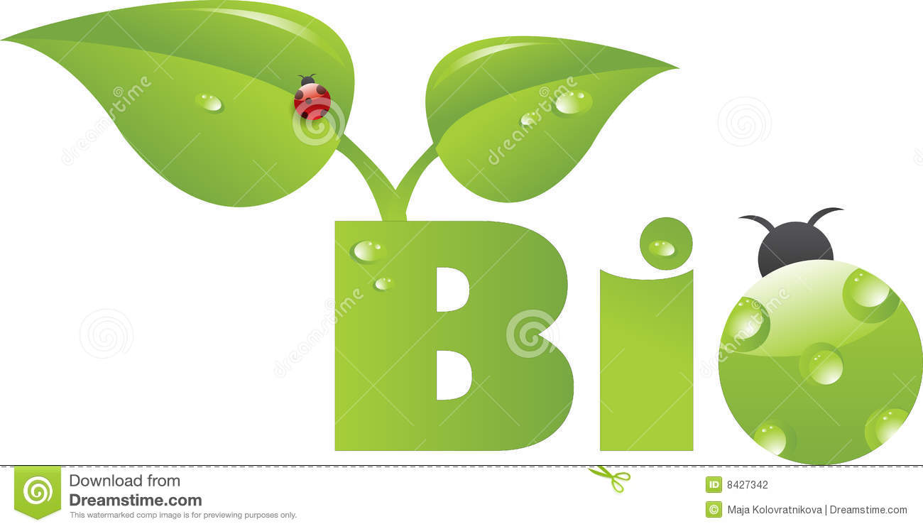 Bio Caption With Green Ladybug Stock Photography Image
