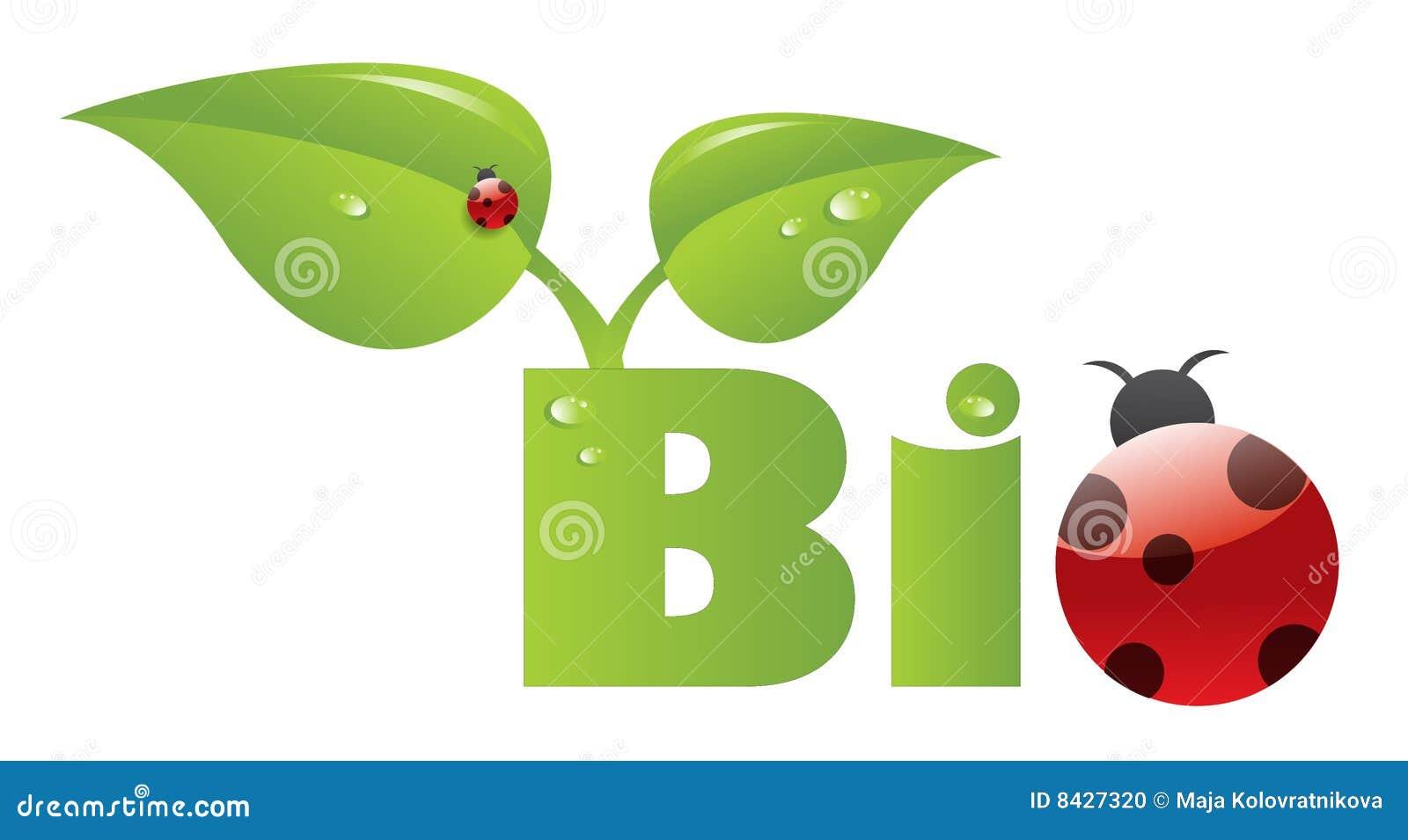 Bio caption with ladybug