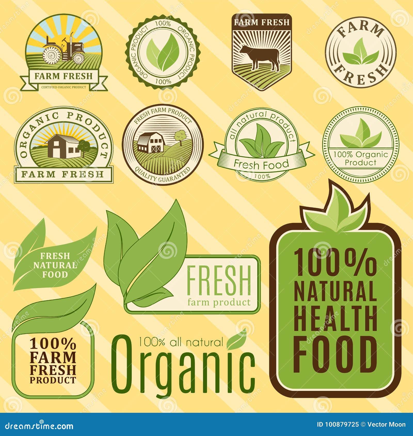 Bio Farm Organic Eco Healthy Food Templates And Vintage