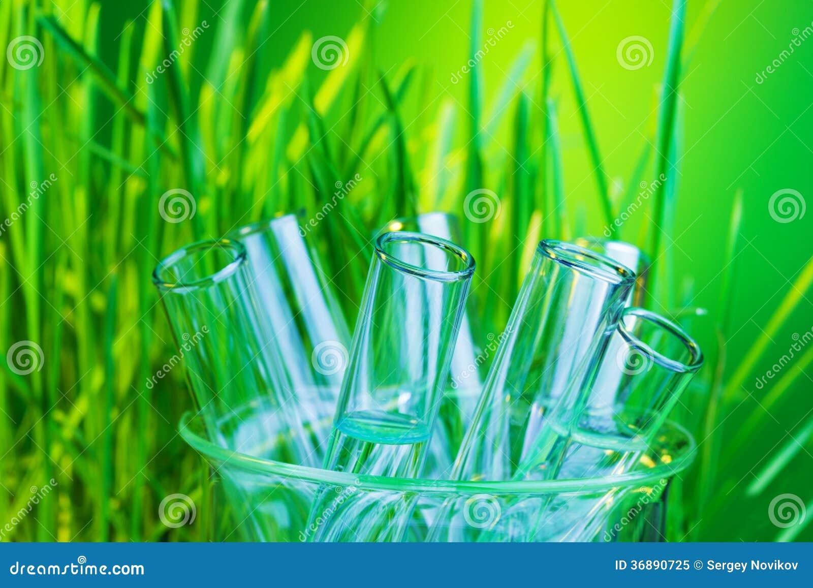 Download Bio- laboratorio immagine stock. Immagine di analizzi - 36890725