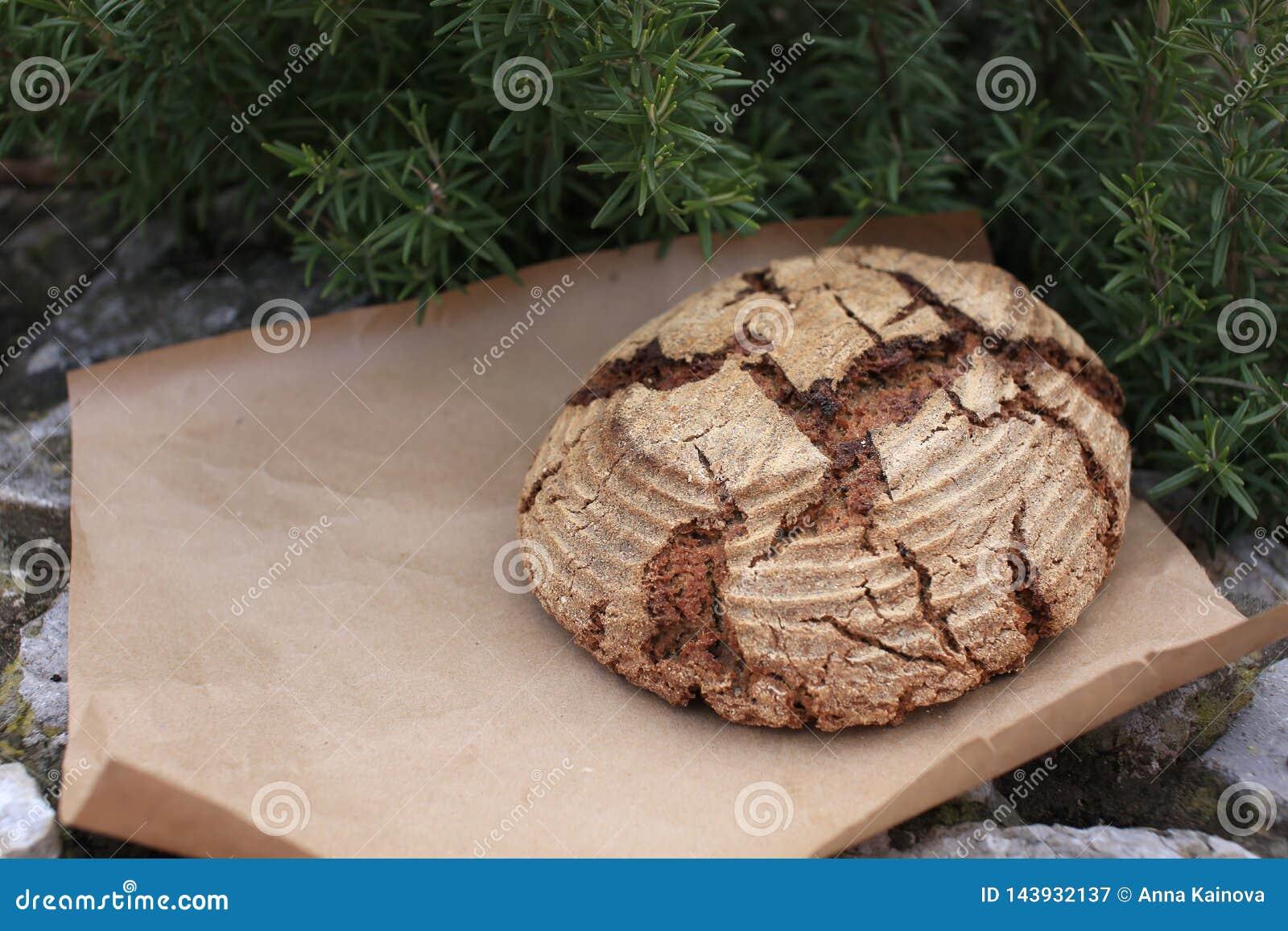 Bio pão inteiro da grão