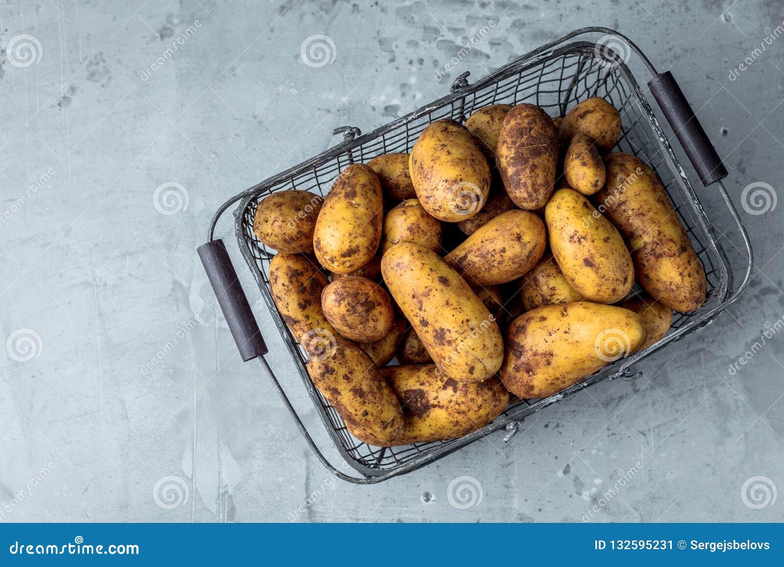 Bio pommes de terre fraîches sur le plan rapproché gris de fond