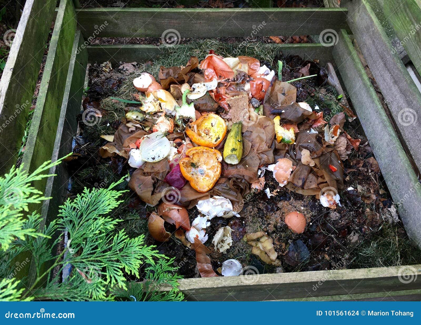 Bio- spreco e composta freschi