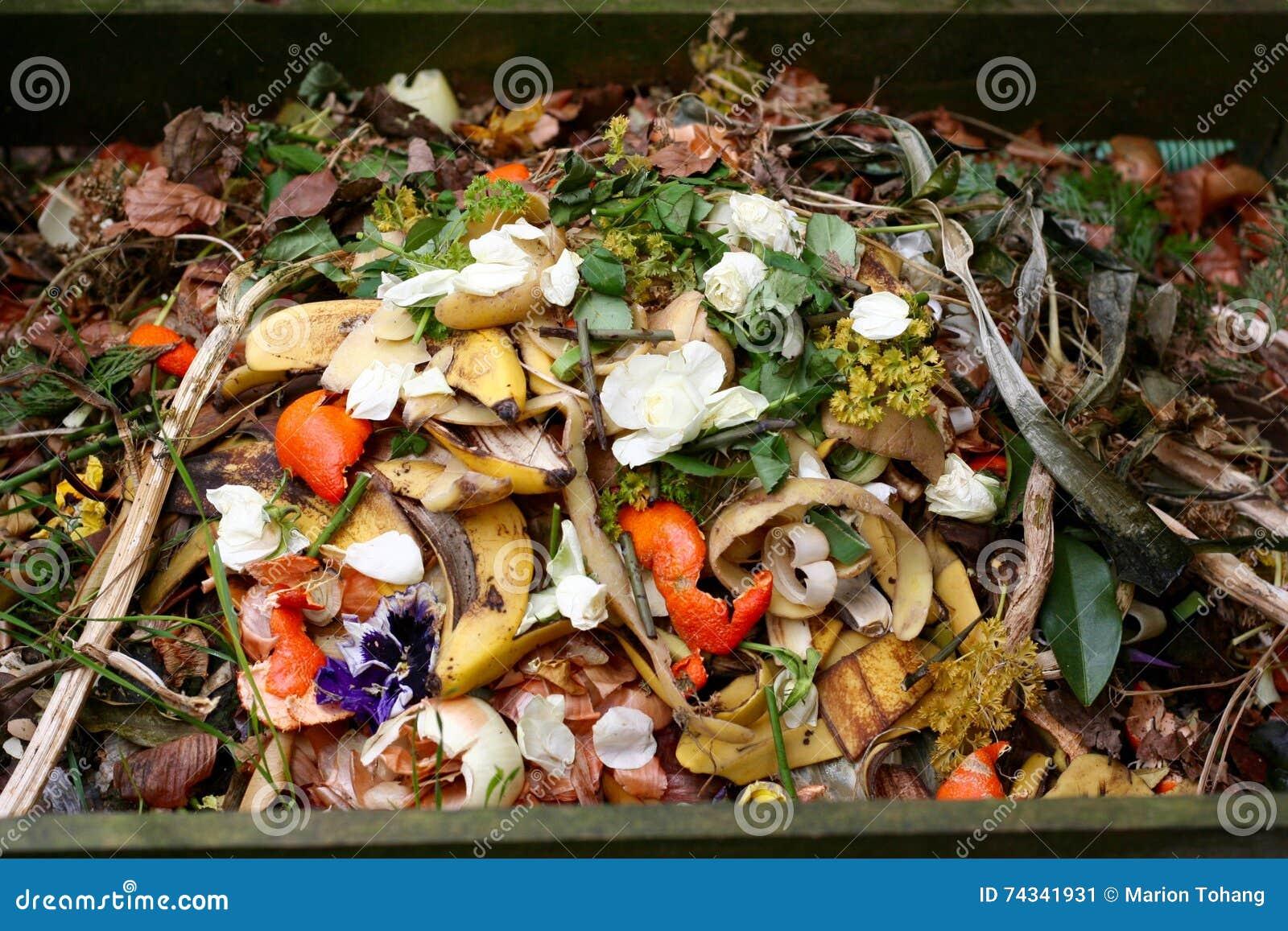 Bio--spreco e composta freschi