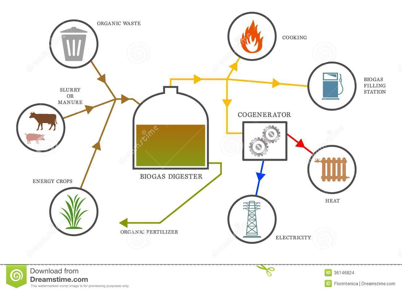 Biogas diagram stock vector  Illustration of digester - 36146824