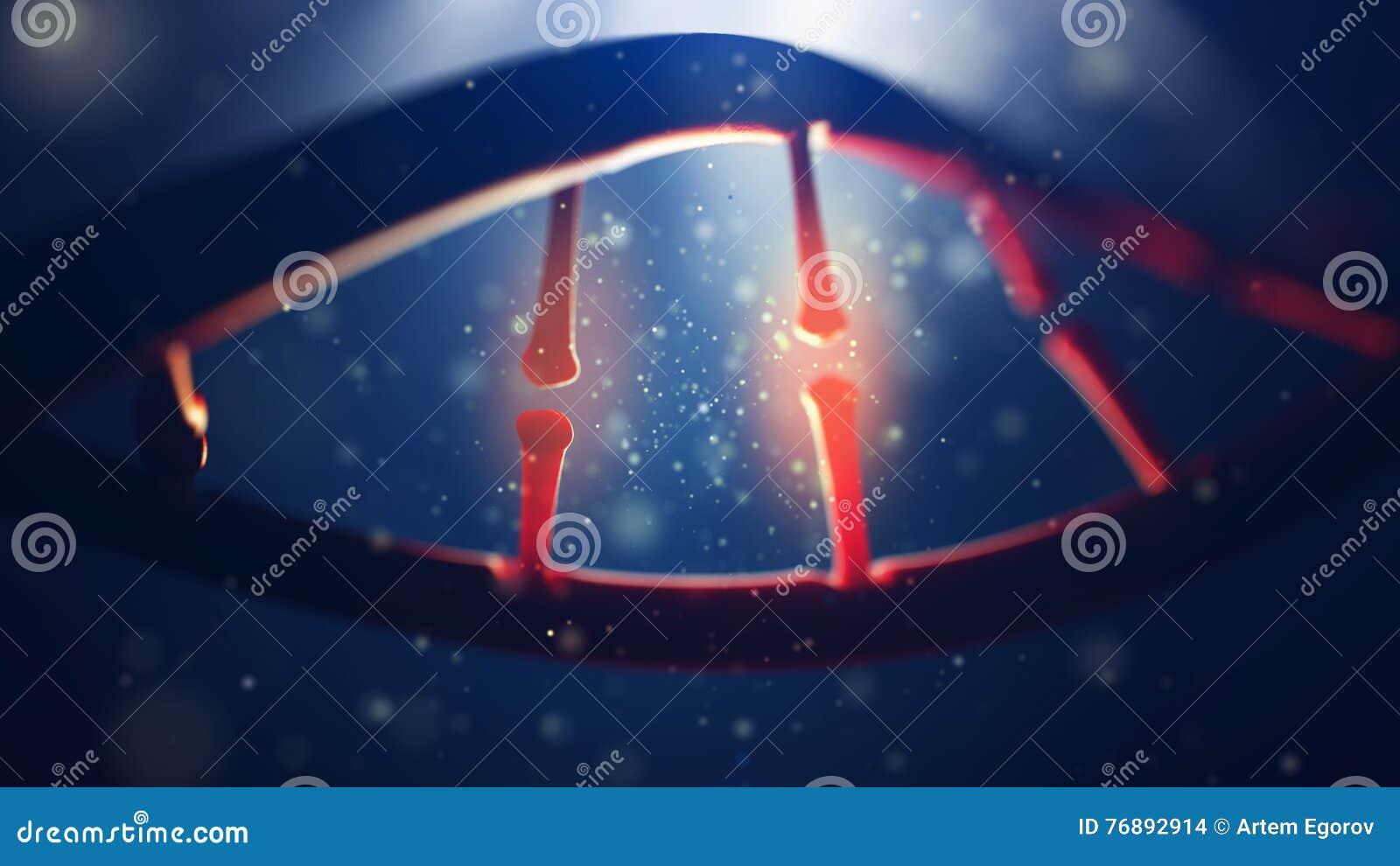 Biologi, vetenskap och läkarundersökningteknologibegrepp Closeup av den mänskliga genom för begrepp